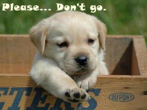 Do not go